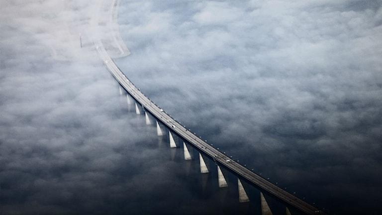 The Öresund bridge between Denmark and Sweden seen from above. Photo: TT