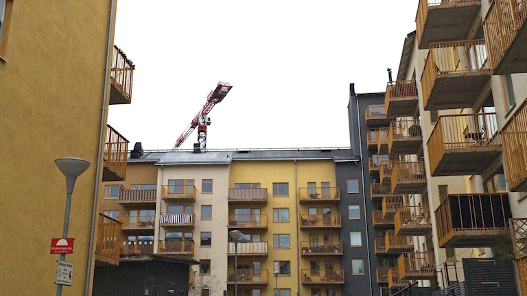 There are building cranes all over Ursvik, west of Stockholm. Photo: Ulla Engberg/SR