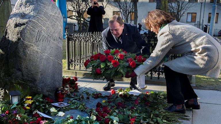 Sveriges statsminister Stefan Löfven lägger ned en krans på Olof Palmes grav. Foto: Jonas Ekströmer/TT