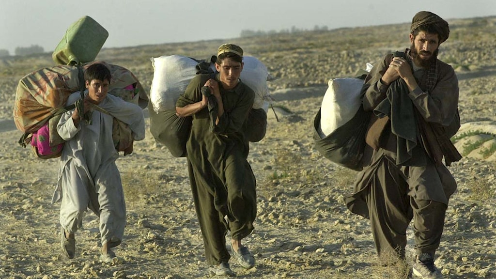 Hasan Sarbakhshian / AP