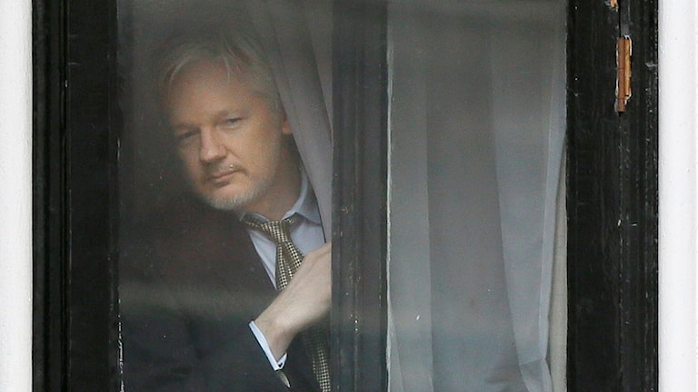 Wikileaks founder Julian Assange at the window of the Ecuadorean Embassy in London. Photo: Kirsty Wigglesworth / AP / TT.