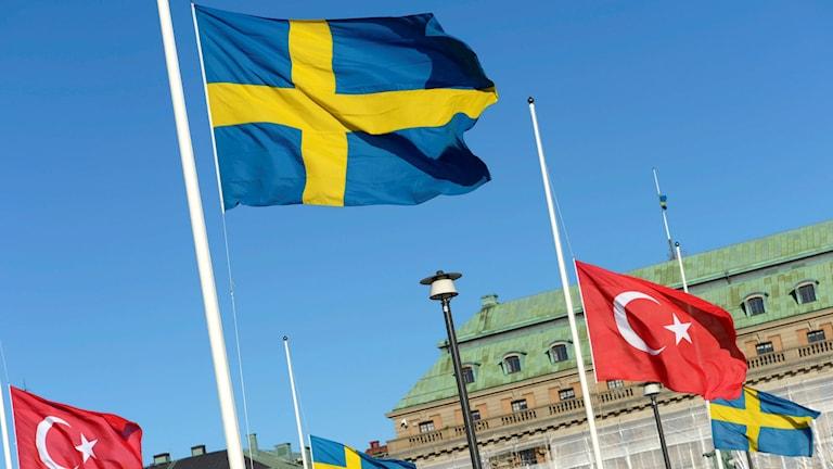 The Swedish and Turkish flags. Photo: Leo Sellén / TT.