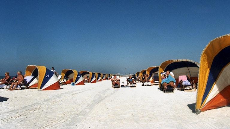 Sunbathers soaking up rays out on a beach. File photo: Ulf Berglund / TT.