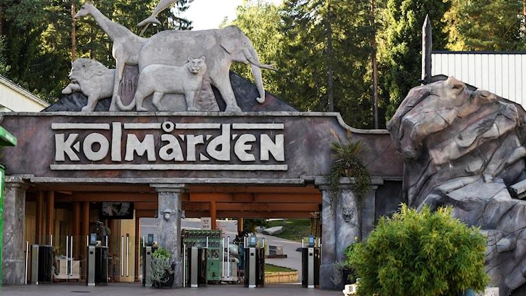 Kolmården Wildlife Park.