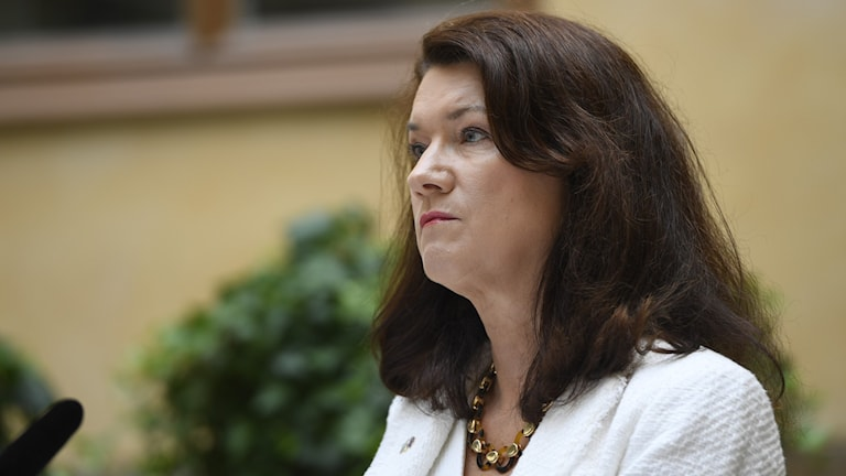 Sweden's Foreign Minister Ann Linde