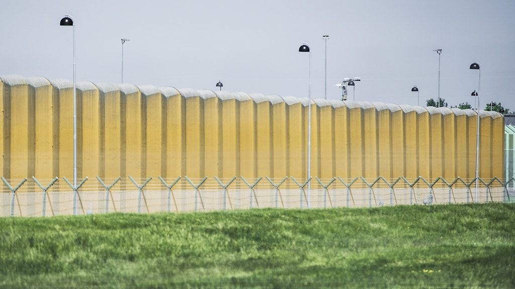 A high wall with lights and razor wire.