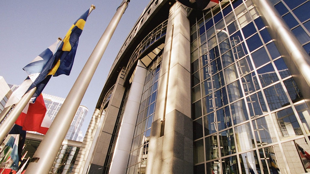 Snapshop of the European Parliament building in Bruselles, with flags outside.