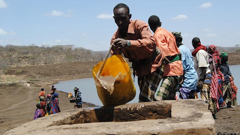 A drought in Ethiopia in 2012. Photo: Olof Björnsson / TT.