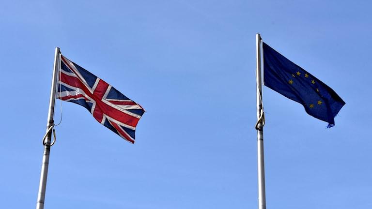 British flag flying next to the EU flag.