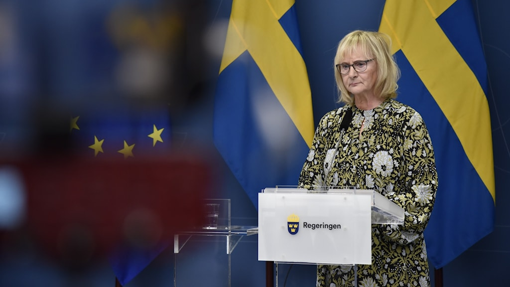 Sweden's minister for Public Administration, Lena Micko at a press conference.