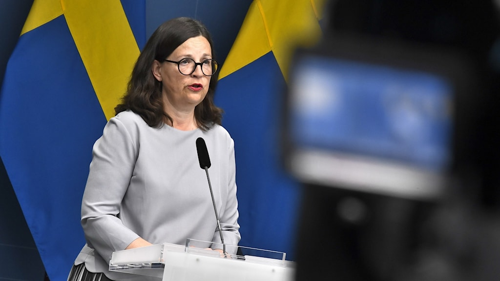The Minister for Education in front of a microphone and a Swedish flag.