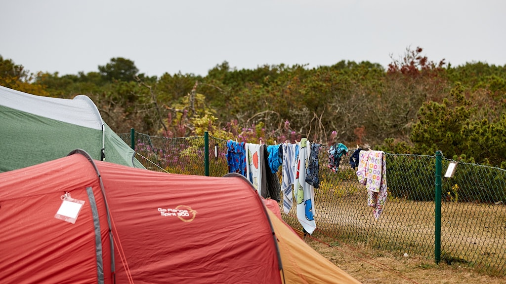 Image of a couple of tents and an impromtu washing line with clothes.