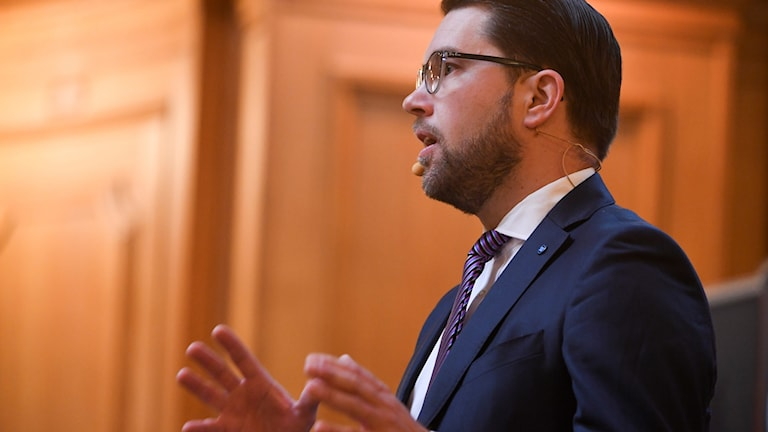 SD leader Jimmie Åkesson presented his party's election strategy on Thursday.