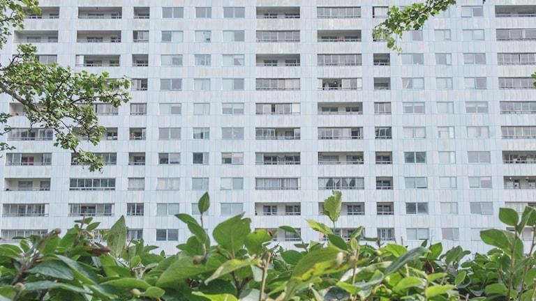 The facade of a block of flats.