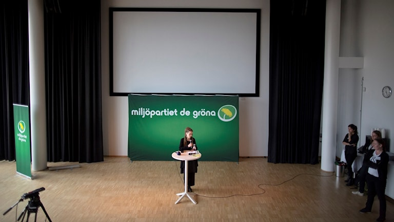 A snapshot from the Green Party's congress during the summer of 2016.