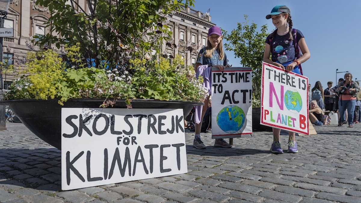 Young people protesting for the climate.
