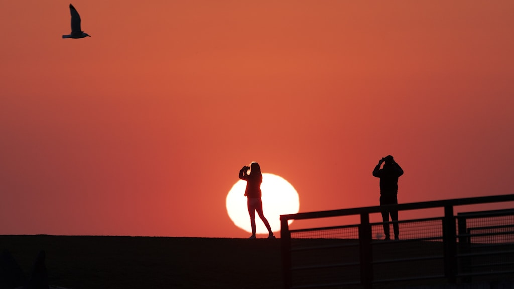 An image of a setting sun and people on the ground.