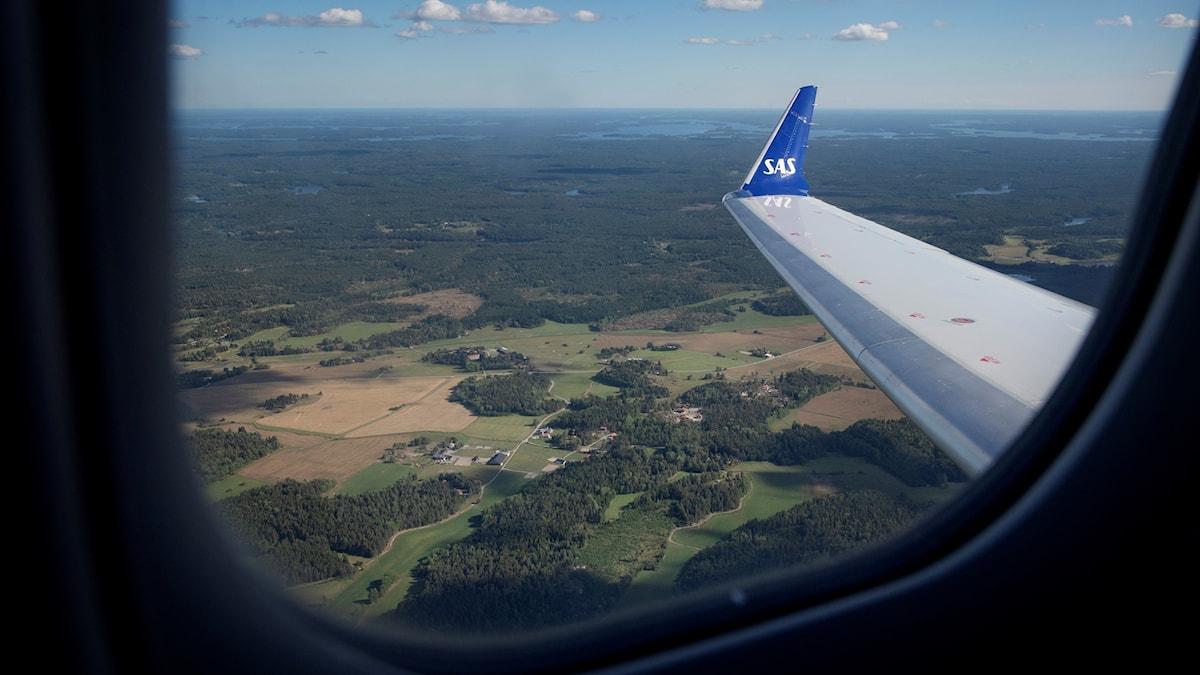More flying internationally.