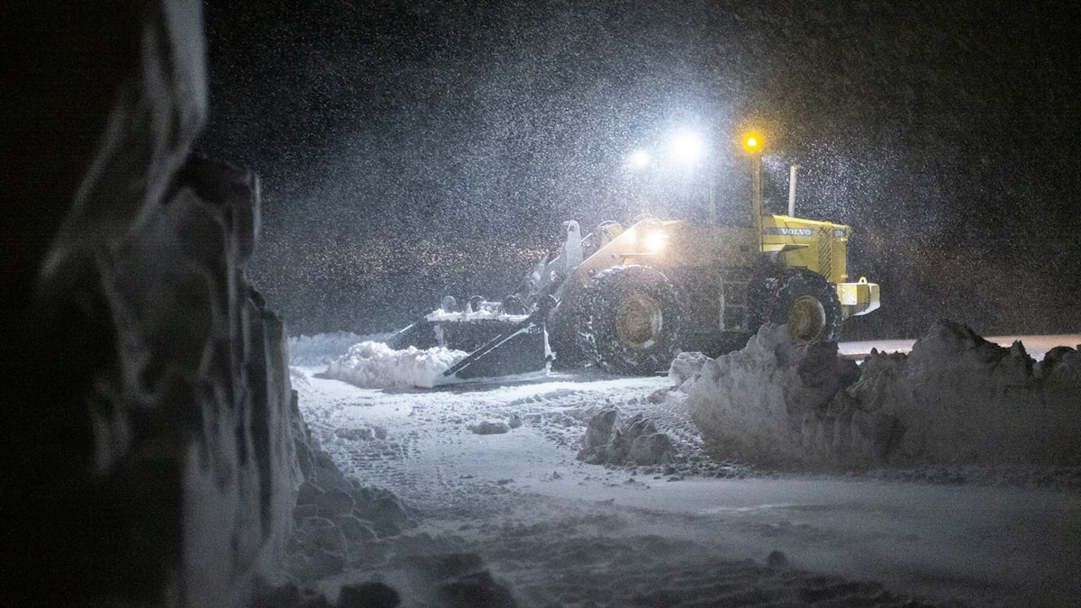 Snow ploughs clearing a road at night