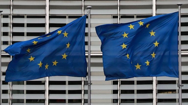 Intensiva förhandlingar i Bryssel