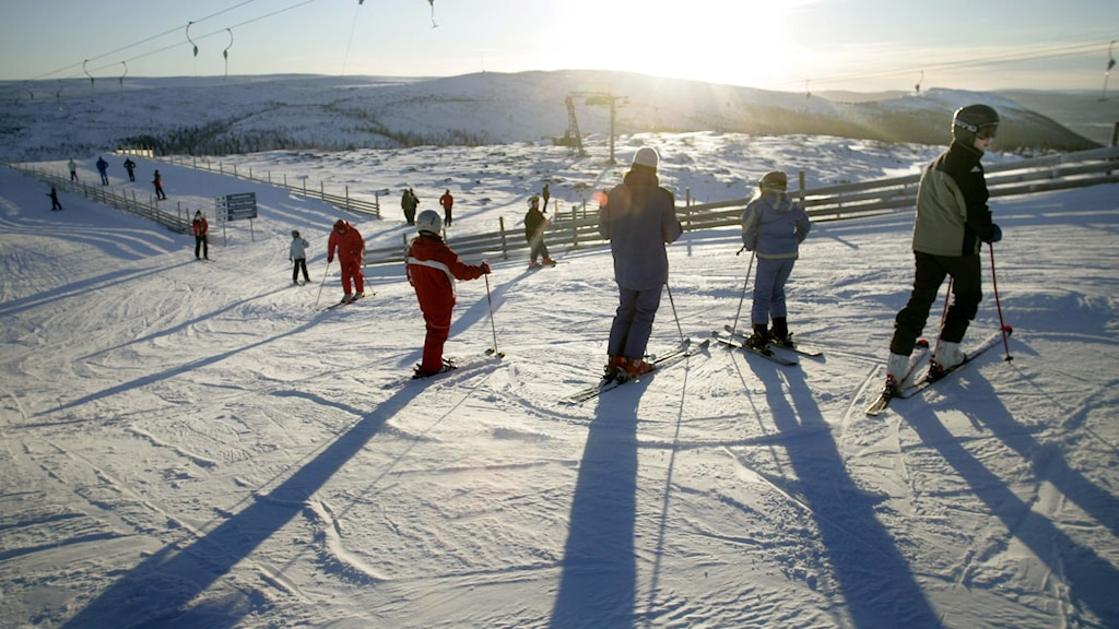 A line of people on skis heading up a hill, with the sun shining