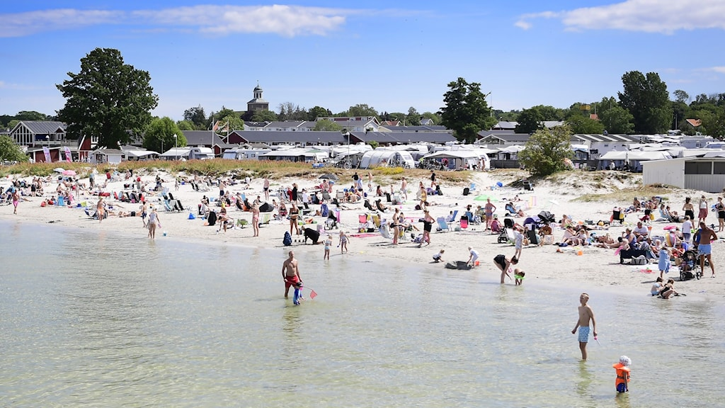 A sunny day at a semi-crowded beach.