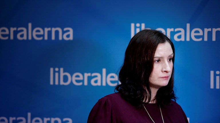 Liberal Party foreign-policy spokesperson Birgitta Ohlsson. Photo: Jessica Gow/TT
