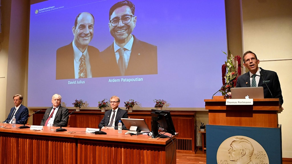 Announcement in front of a overhead image of the two researchers.