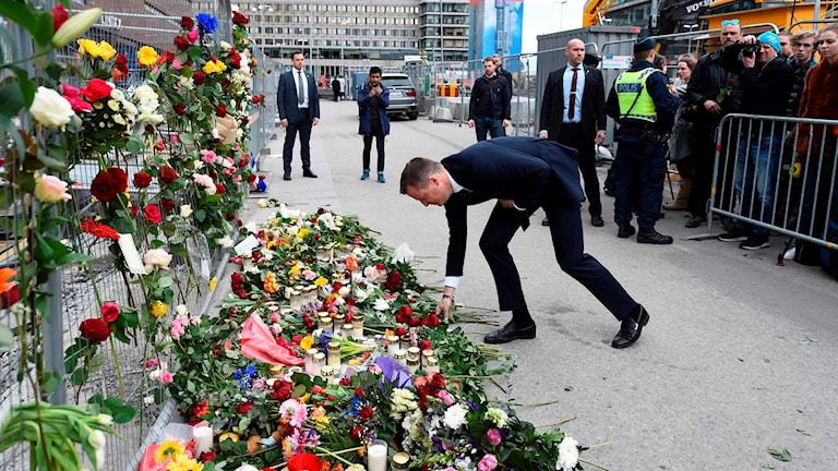 Anders Ygeman laying down flowers