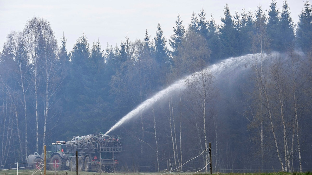 Tractor sprays water over a woody area.