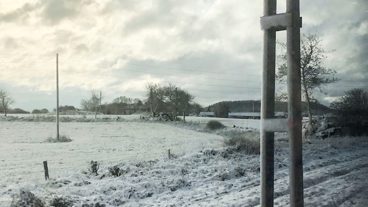 A field with snow