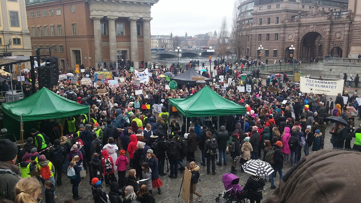 Protesters gathereing early at Mynttorget, outside parliament, joining Greta Thunberg will speak shortlty after noon.