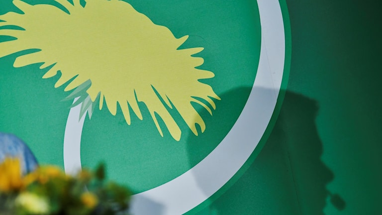 The Green party banner