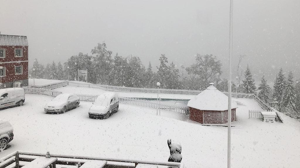 Snöfall på Långberget. Foto: Dan Norström.