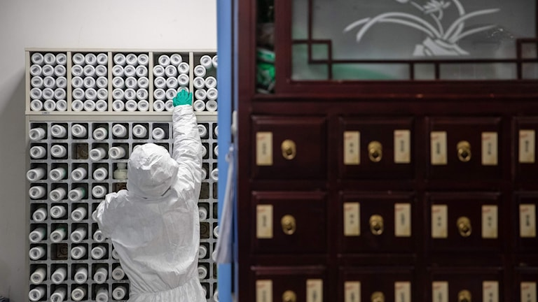 A medical worker produces traditional Chinese medicine to treat patients infected by the COVID-19 coronavirus at a hospital in Wuhan in China's central Hubei province on March 2nd, 2020.