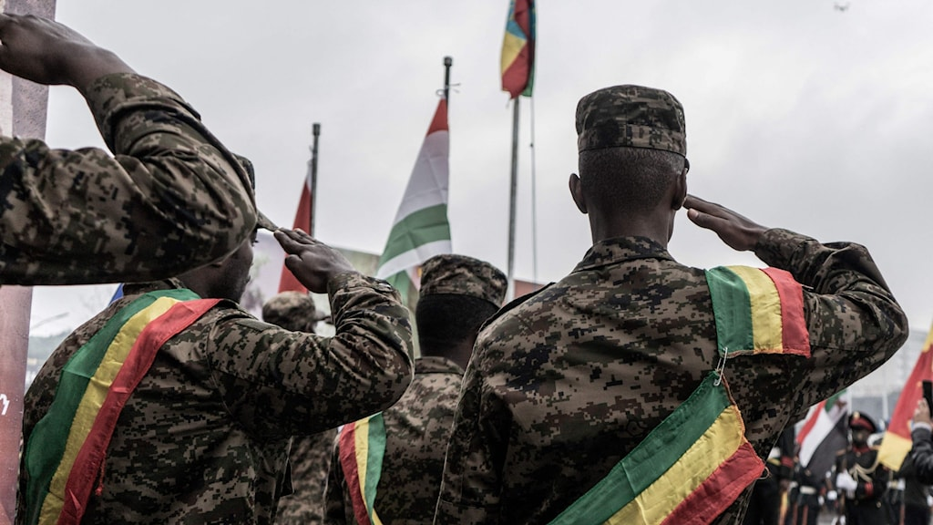 Soldiers saluting the Ethiopian flag.