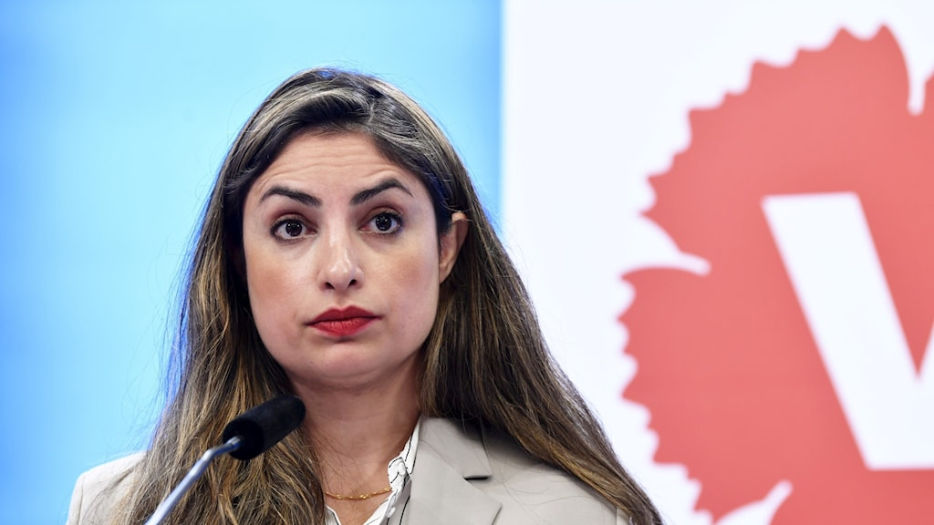A woman at a press conference