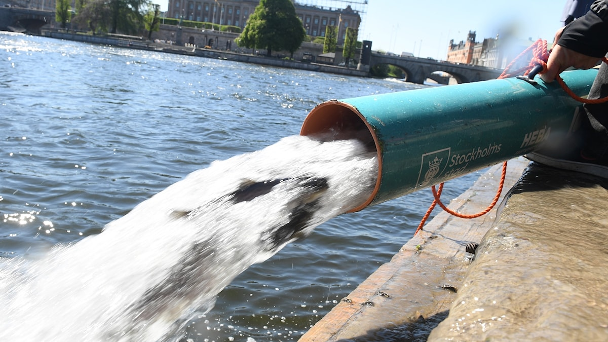 A pipe with water and fish into Stockholm's waters