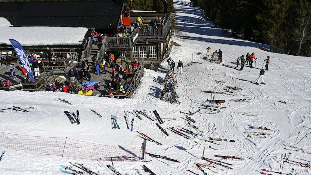 An aerial shot of people with skis on a snowy slope.