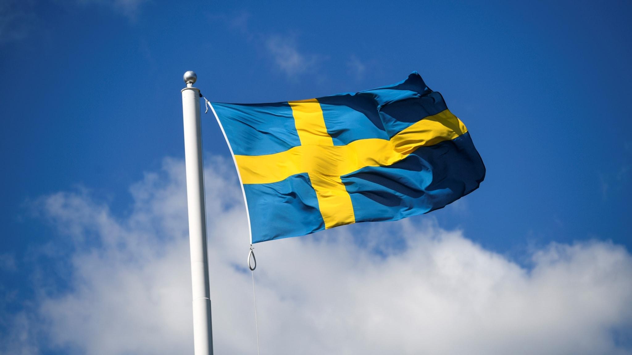 Swedish flag flying in the sky.