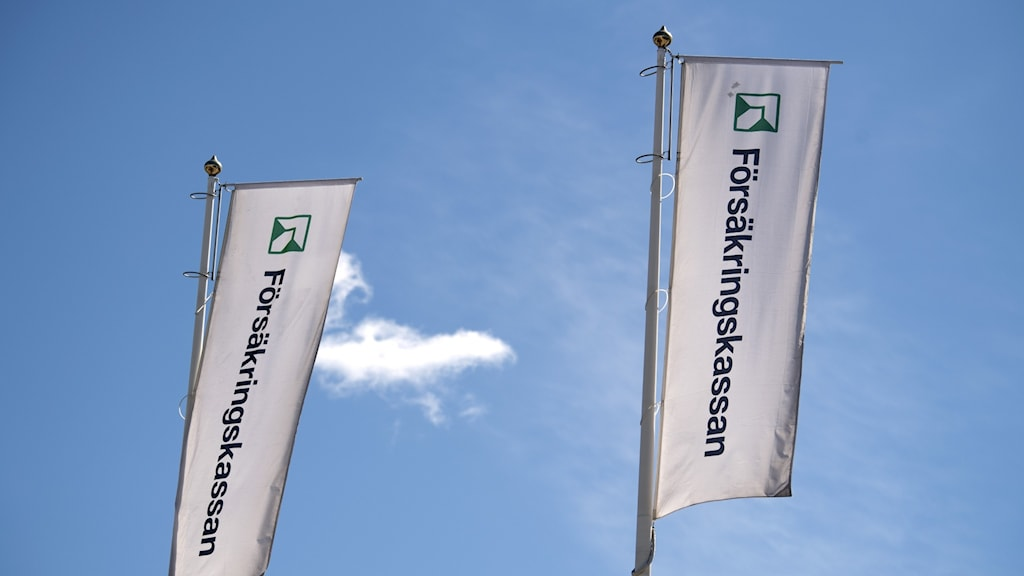 Flags against a blue sky with the name and logo of the social insurance agency