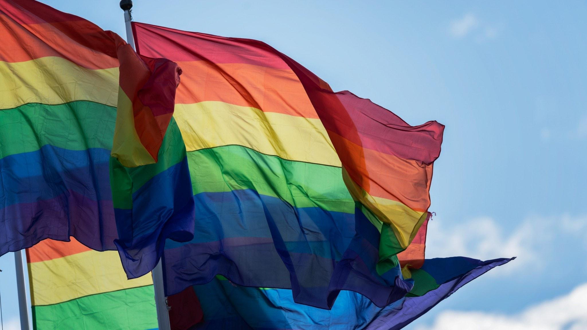 The Pride rainbow flag.