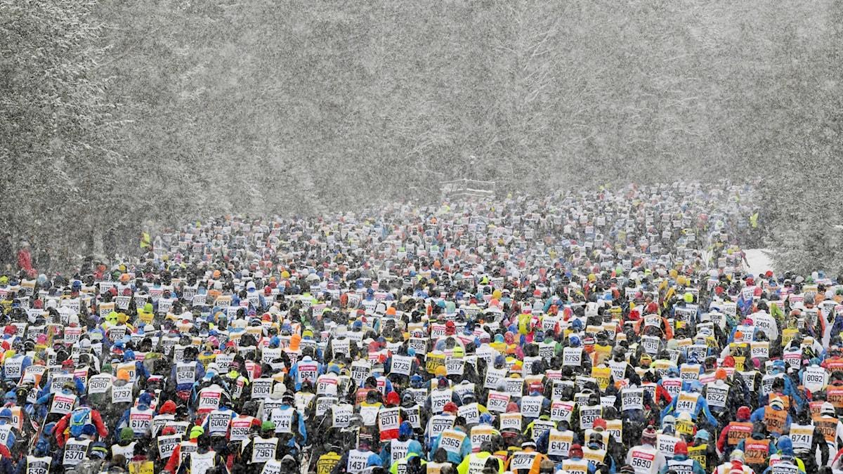 Huge numbers of cross country skiers.