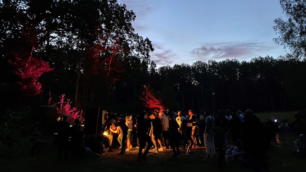People dancing in a clearing in the woods.