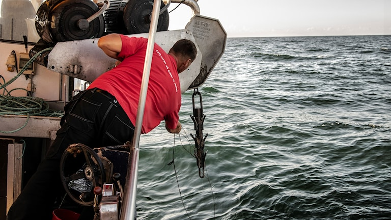 Fisherman gets a fishing net out of the ocean.