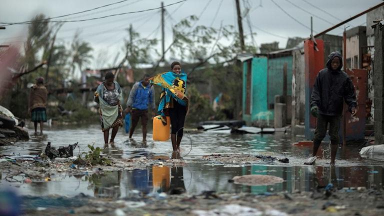 People walking through water. ecd93c8c1e4ec