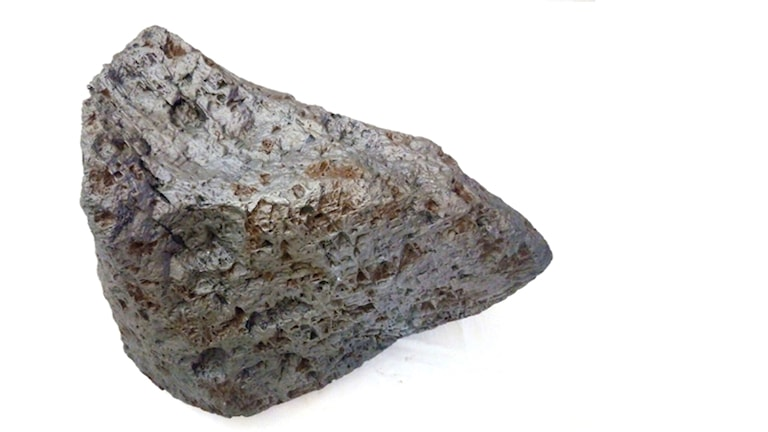 A picture of the 26 x 23 x 17 cm meteorite sold on Sunday.