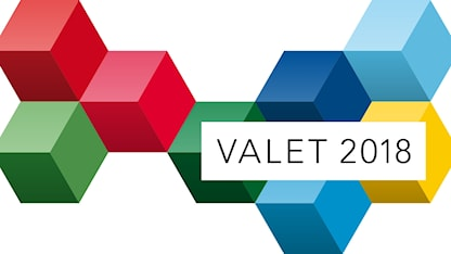 "The phrase ""Valet 2018"" against a pattern of multi-colored cubes"