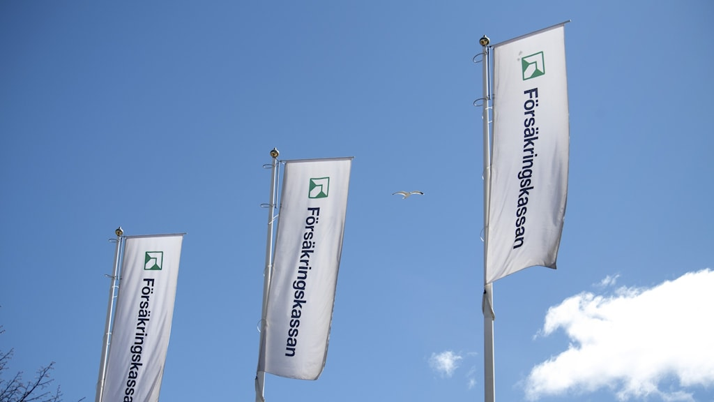 Flags showing the name of the social insurance agency