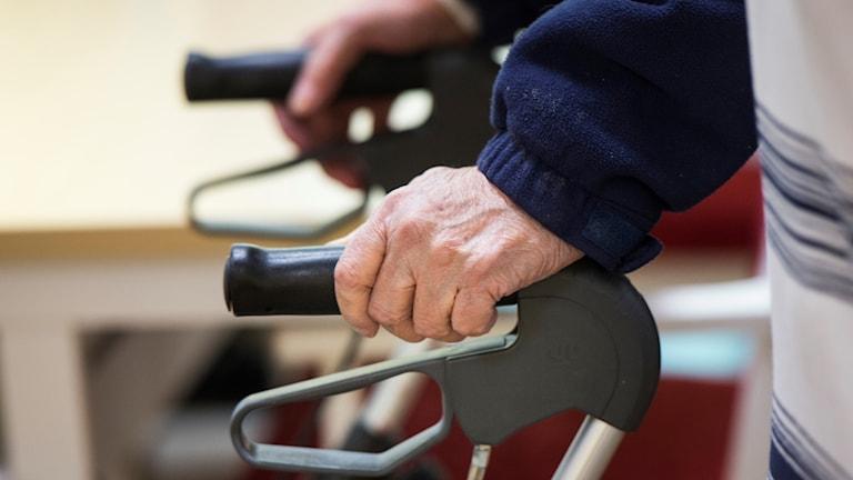 Elderly hands holding a walking frame